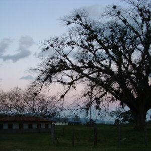 Ranch-at-dusk